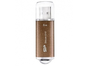 Silicon Power SECURE G10 8GB