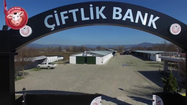 Bakanlık Çiftlik Bank'a Benzeyen Girişimleri Açıkladı!